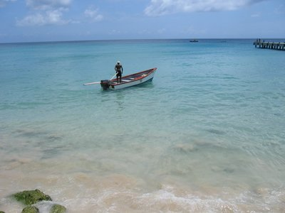 Near Speightstown, Barbados